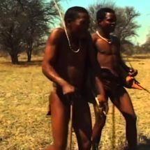 Botswana : en terre trop inconnue