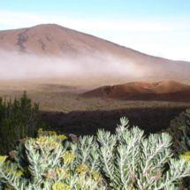 Réunion : Volcan extraordinaire
